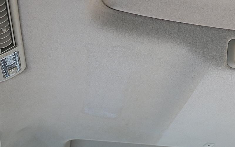 ceiling_carpet_rinser_8